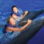 explora-gallery-Dolphin-Signature-Swim-01